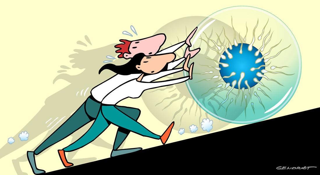 Fécondation in vitro : le parcours du combattant