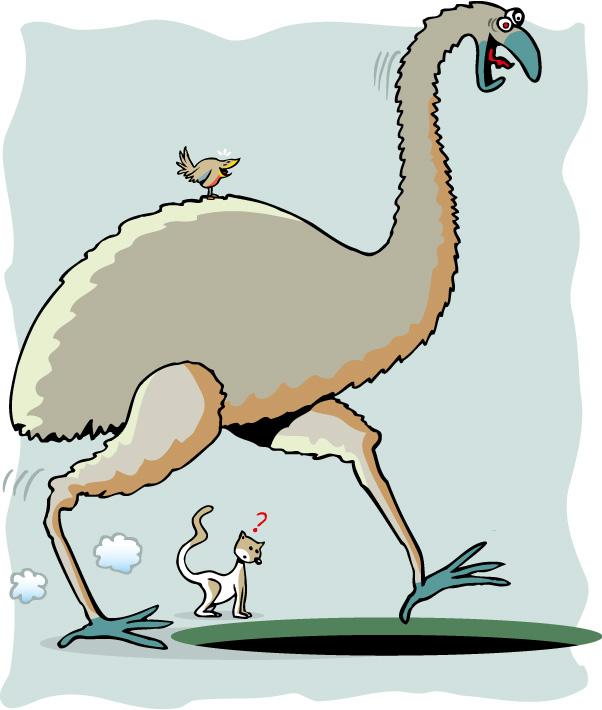 Un oiseau géant disparu