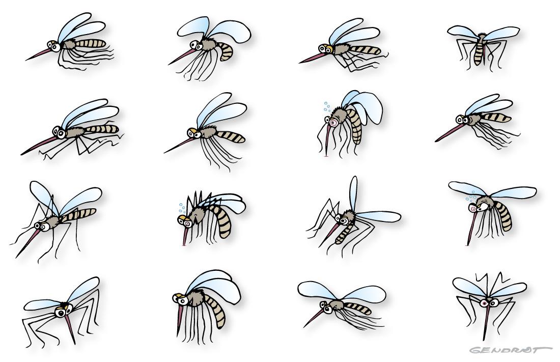 Se protéger des piqûres de moustiques