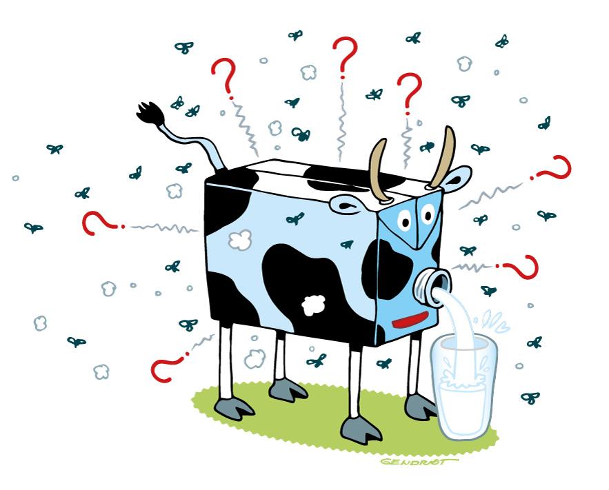 Courrier lecteurs - Pack de lait et date de consommation